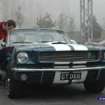 Classic-3 (71)