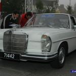 Classic-3 (89)